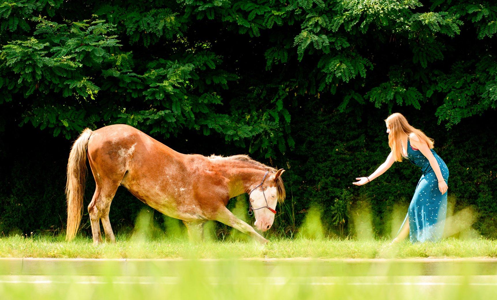 Фотосесія з трюковим конем