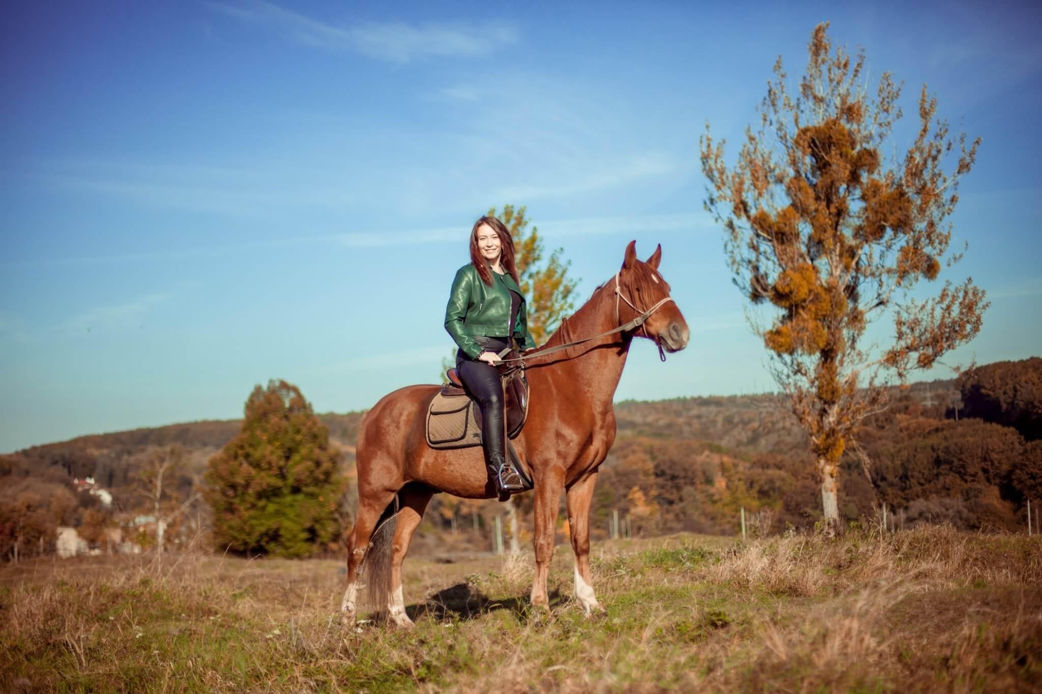 Катання на конях для одного