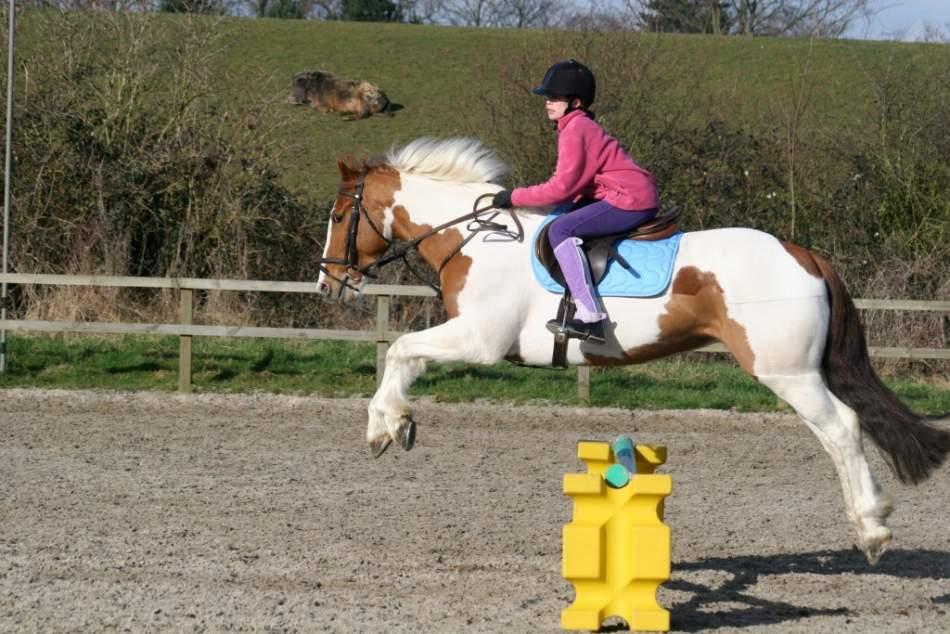 Абонемент катання на поні