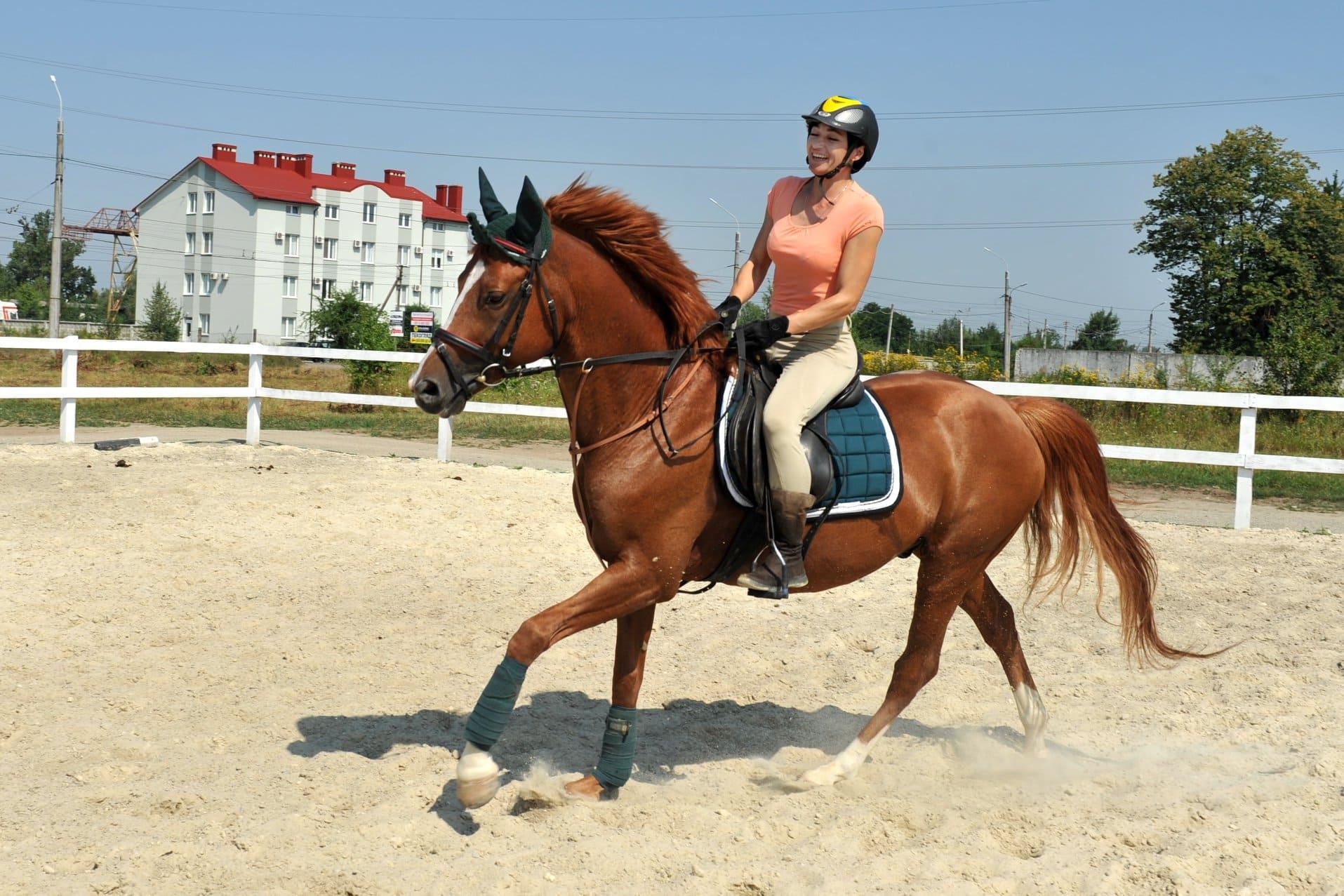 Катание на лошадях в Ивано-Франковске